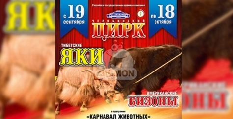"""По 2 билета для 3-х победителей в Цирк на премьерное представление """"Карнавал животных""""!"""