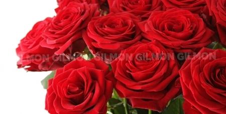 Шикарные букеты из свежесрезанных роз и тюльпанов круглосуточно в салоне цветов Sunflowers. Самый яркий подарок!